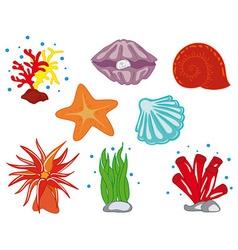 Tropical Ocean Flora vector image vector image