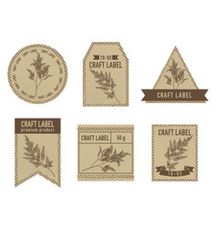 craft labels with astilbe vector image