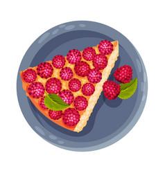 Pie or tart piece with raspberry as dessert served vector