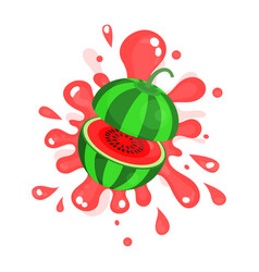 Sliced ripe watermelon juice splashing colorful vector