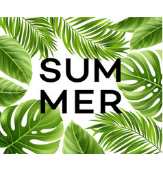 summer poster with tropical palm leaf vector image