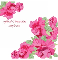 Vintage Spring Summer peony Flowers vector image