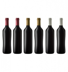 red wine bottles vector image vector image