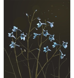 Romantic Wild Flowers Composition on Dark vector image