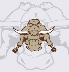 cartoon angry bull on white background animal vector image
