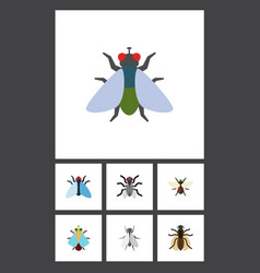 Flat icon housefly set of bluebottle hum vector