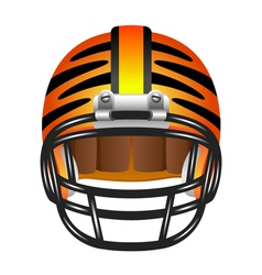 Football helmet with tiger stripes vector image
