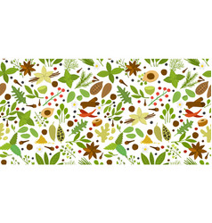 Herbs and spices background seamless pattern for vector