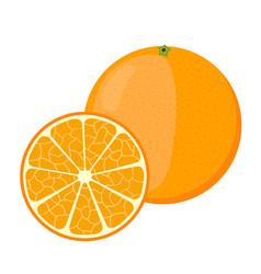 Orange in cartoon style fresh ripe exotic fruit vector