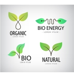 Set of green leaves eco bio logos natural vector