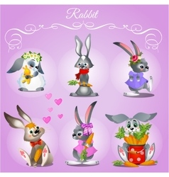 Set of six rabbits on a purple background vector image