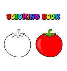 Simple tomato outline for colouring book isolated vector