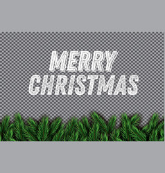 fir branch on transparent background merry vector image vector image