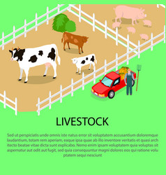 farm with livestock and text information below vector image
