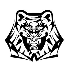 head tiger on a white background vector image