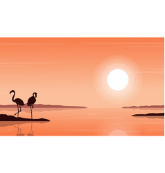 silhouette of flamingo on beach scenery vector image
