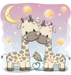 Two cute giraffes vector
