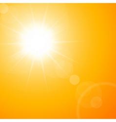 summer sun vector image