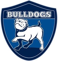 English bulldog british rugby sports team mascot vector image vector image