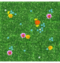 lawn seamless vector image vector image
