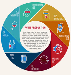 thin line infographic of wine fermentation vector image vector image
