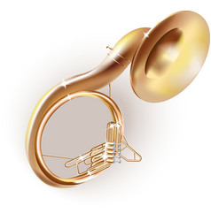 Classical sousaphone vector image vector image