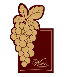 Wine label - gold vine vector image