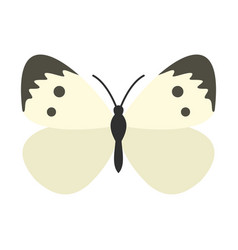 Butterfly with pattern on wings icon flat style vector