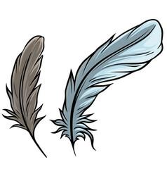 cartoon detailed bird feathers set vector image