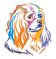 Colorful decorative portrait dog cavalier king vector