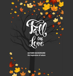 fall leaves and lettering vector image