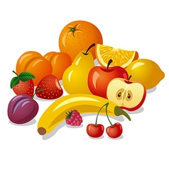 Group of fruits vector
