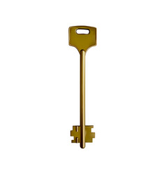 old yellow key on a white vector image