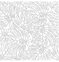 Philodendron monstera leaf outline white vector