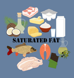 saturated fat nutrient rich food vector image