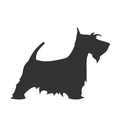 Scotch terrier silhouette breed dog simple black vector