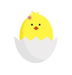 Easter yellow chicken in vector