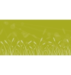 Wheat field line border on blurred background vector