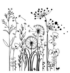 flowers and grass on white collection rustic vector image