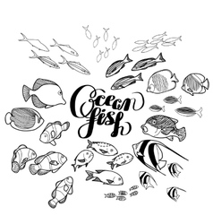 Collection of ocean fish vector image