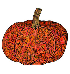 colored doodle of pumpkin with a boho vector image