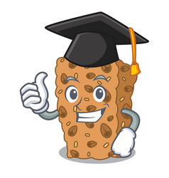 Graduation granola bar character cartoon vector