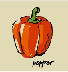 hand drawn pepper vector image