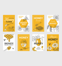 Honey sketch poster honeycomb and bees flyer set vector