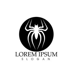 spider logo and symbols template icons app vector image