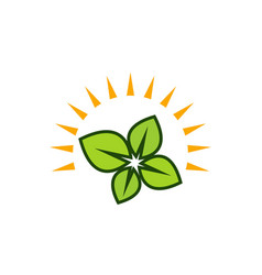sun green leaf logo vector image