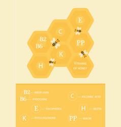 Vitamins honey vector