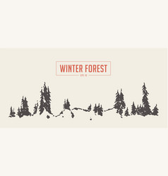 winter fir forest background drawn sketch vector image