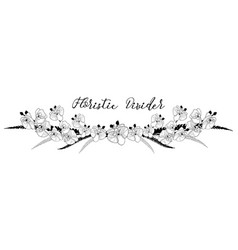 delicate floral text divider orchid flower design vector image vector image