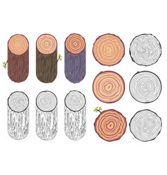 tree rings saw cut tree trunk barrel bark natural vector image